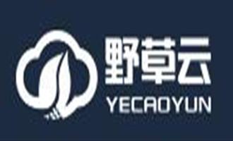 #2018采购季#野草云 :香港KVM 2M 1GB内存 20GB硬盘 年付299元  洛杉矶CERA KVM 年付299元