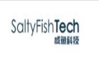 SaltyFish咸鱼科技:德国三网CN2直连VPS $38.88/年 1核512M内存 8GB SSD 50M带宽 600GB流量